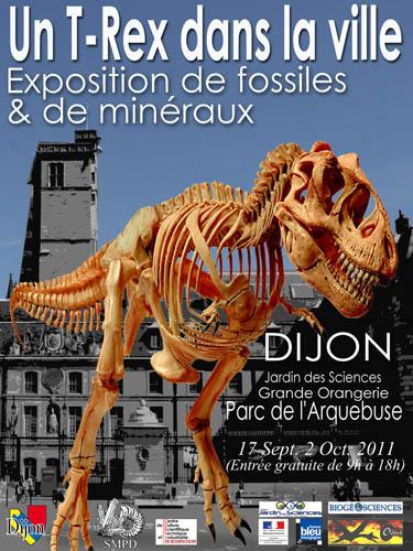 dijon-exposition-Trex