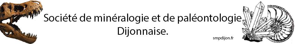 smpdijon.fr