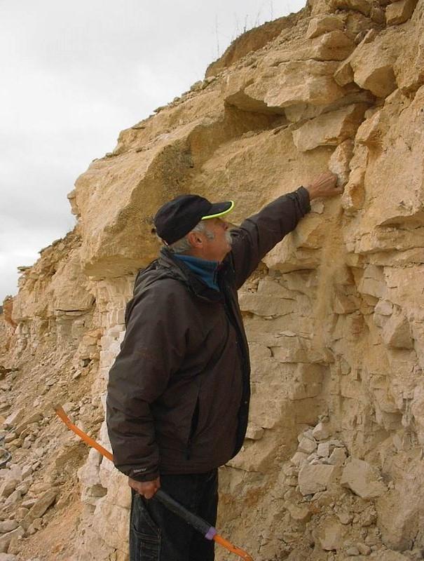 Proctologue de geode