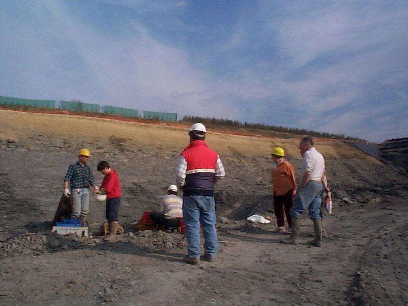 Sur le site de Vaivre en 2000 à la recherche d'ammonites pyriteuses.